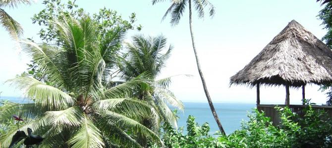 第14話 本領発揮のポンペイ島へ